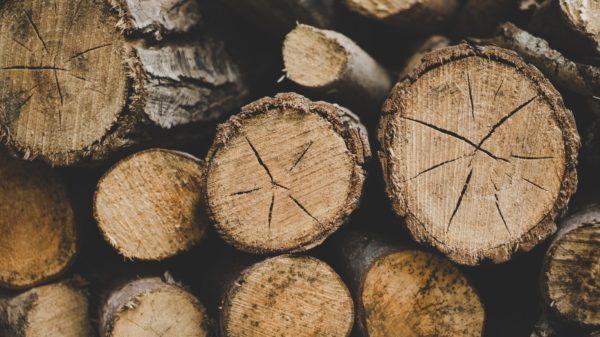 Africa Timber Supplier
